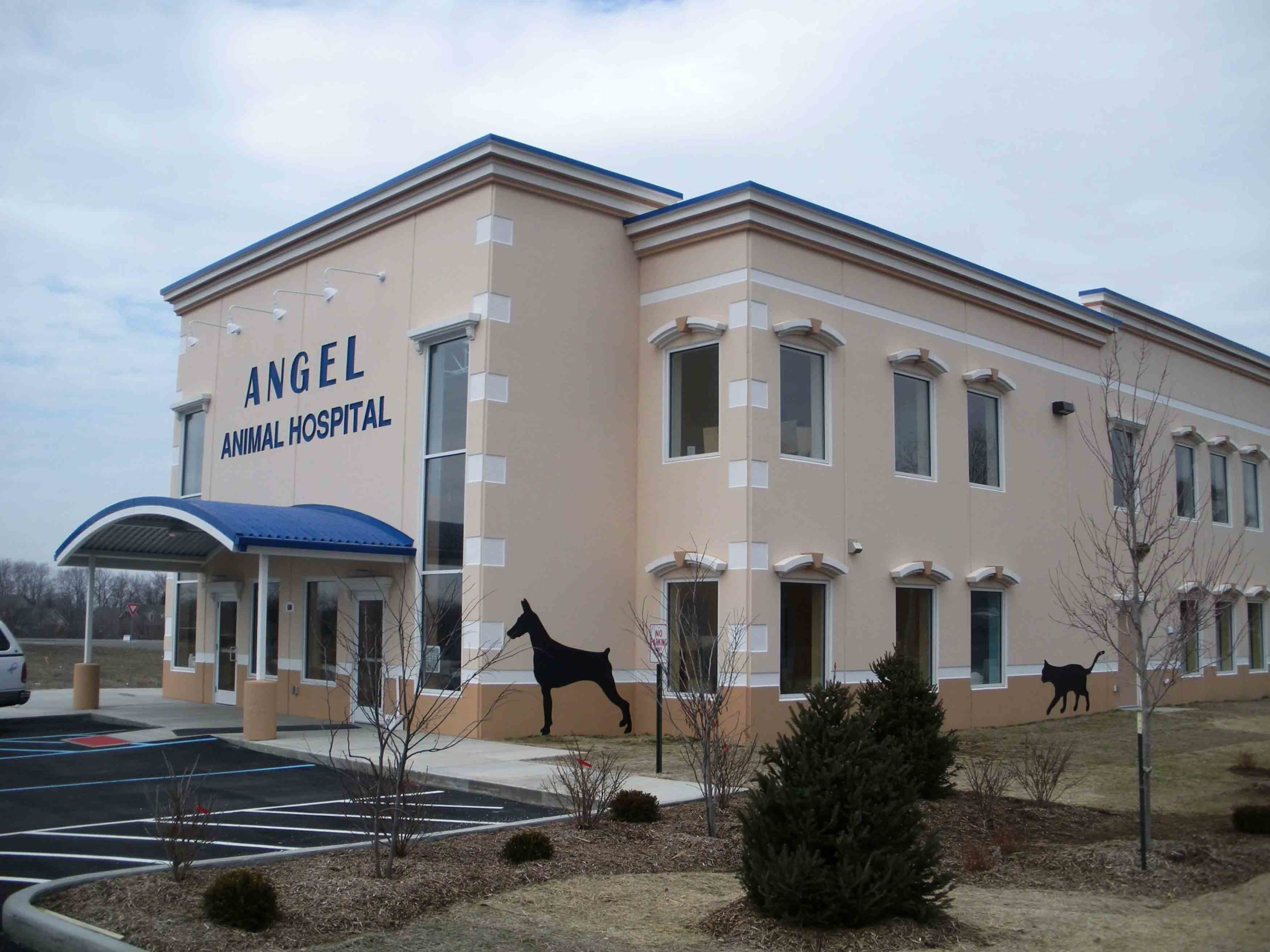 Angel Animal Hospital 2